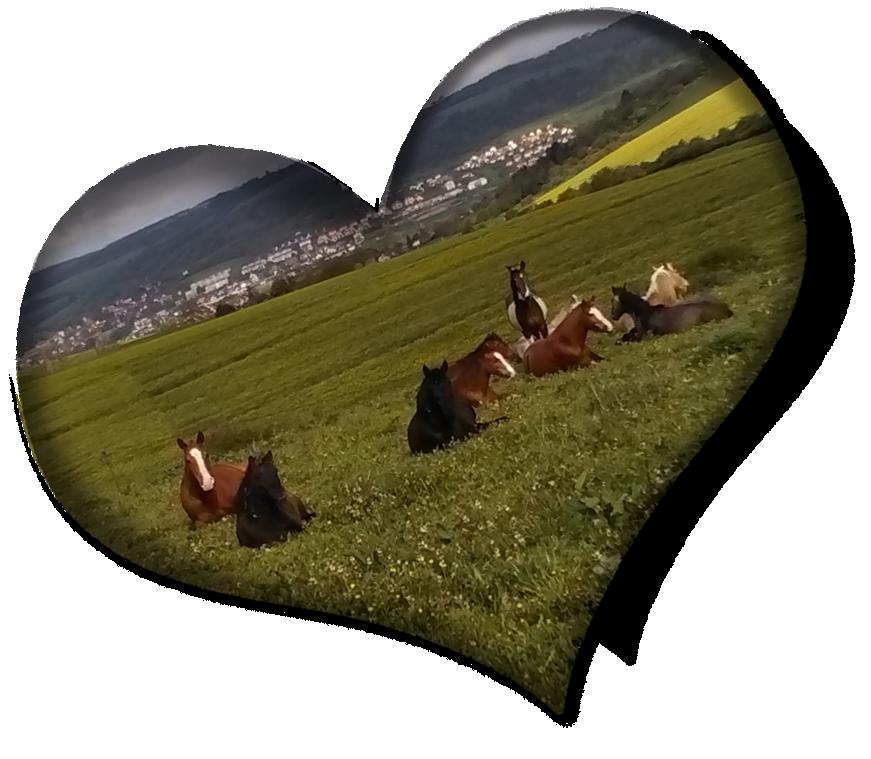 The Green Heart Ranch
